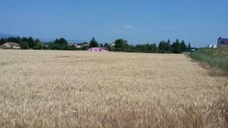 Achat-Vente-Terrain-Alsace-HAUT RHIN-Wittenheim