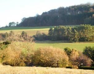 Achat-Vente-Terrain-Bourgogne-COTE D'OR-FLAVIGNEROT