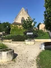 Achat-Vente-Terrain-Poitou-Charentes-VIENNE-Smarves