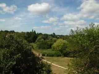 Achat-Vente-Terrain-Poitou-Charentes-VIENNE-Roches-Premarie-Andille